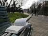 h-lettura-nel-parco-1