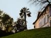 Segnalata Marta Vannuccini - La nostra villa con vista sulla palma.JPG
