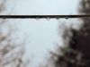 Segnalata-Chiara Sironi-In equilibrio per non cadere in basso.JPG